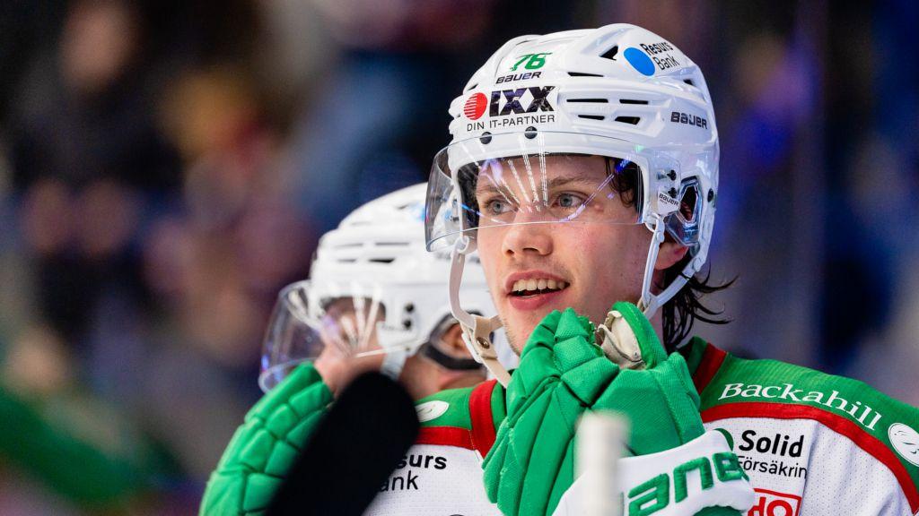 Hockeylivet leker för Dominik Bokk just nu.