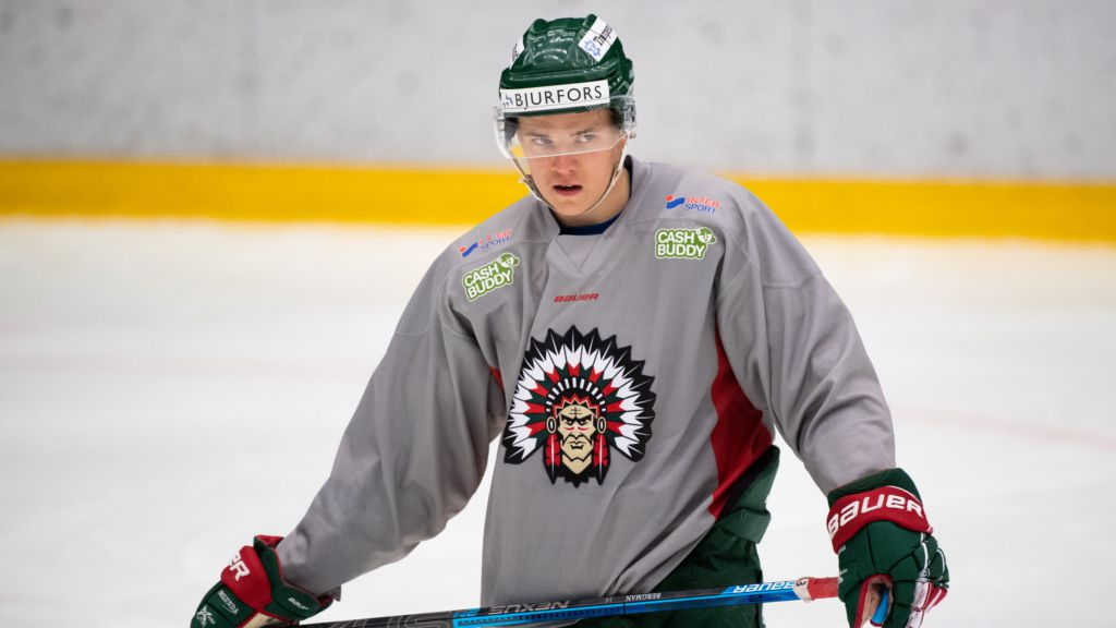 SHL-meriterade backen lånas ut till Hockeyettan