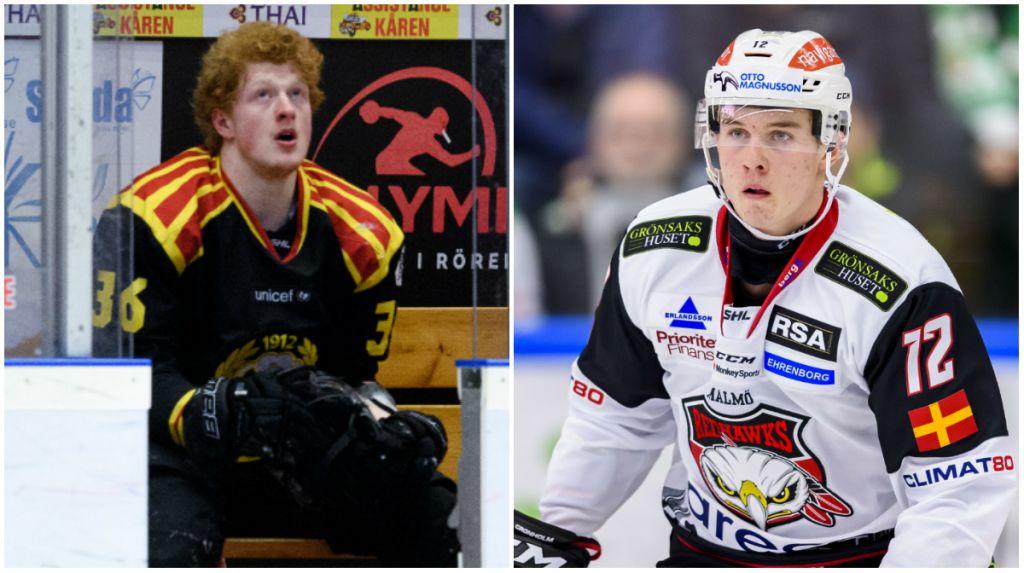 SHL-duon lånas tillbaka till Hockeyallsvenskan