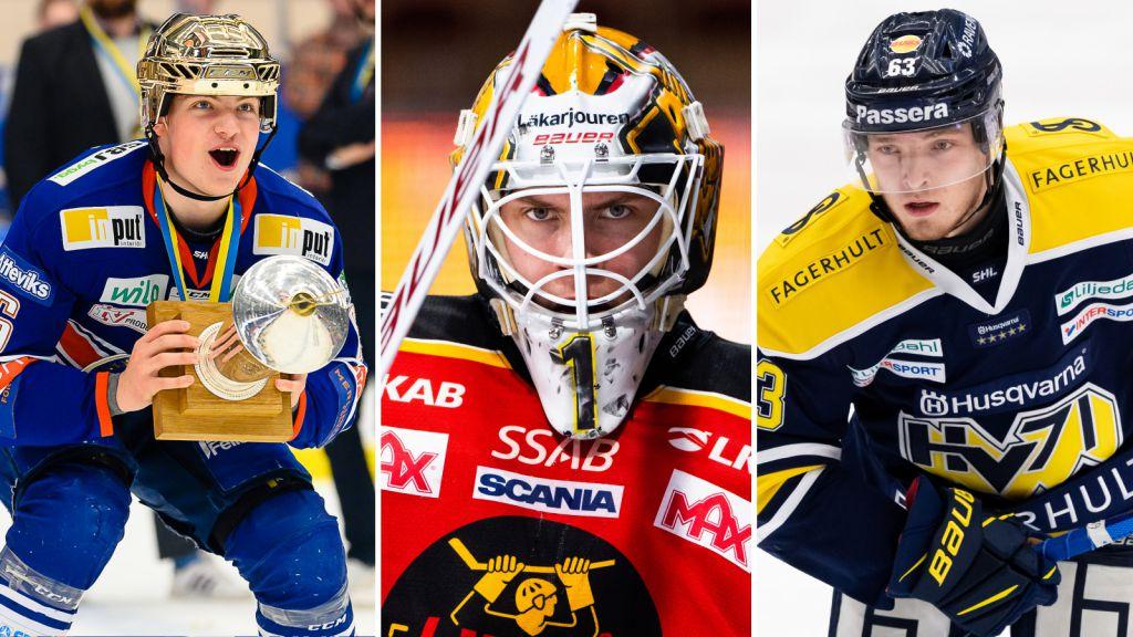 Alla juniorer i SHL och Hockeyallsvenskan kommande säsong