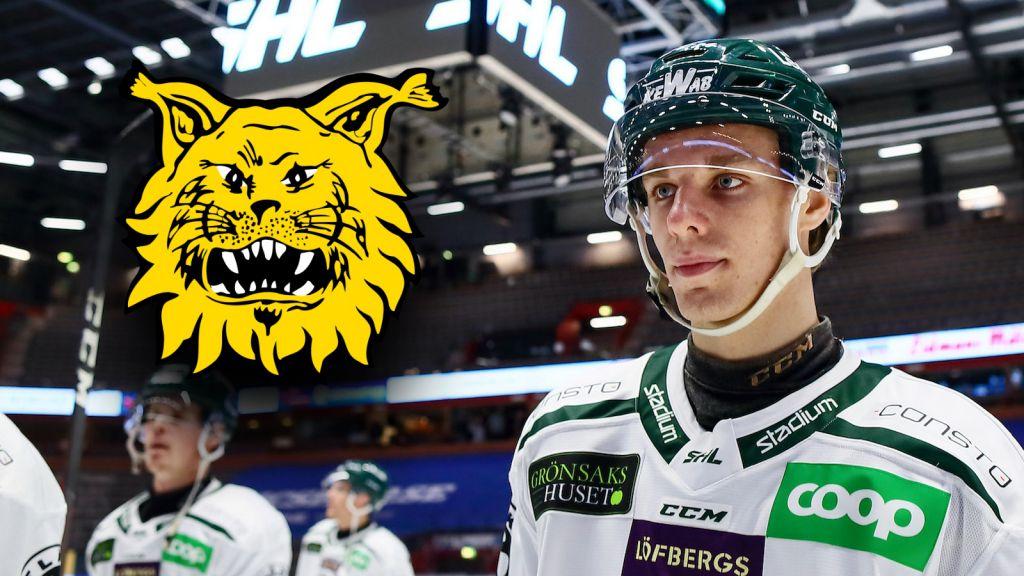 Leo Lööf är numera en Ilves-spelare.