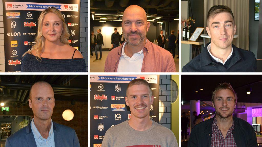 ENKÄTEN: Experterna och journalisterna förutspår – så slutar Hockeyallsvenskan