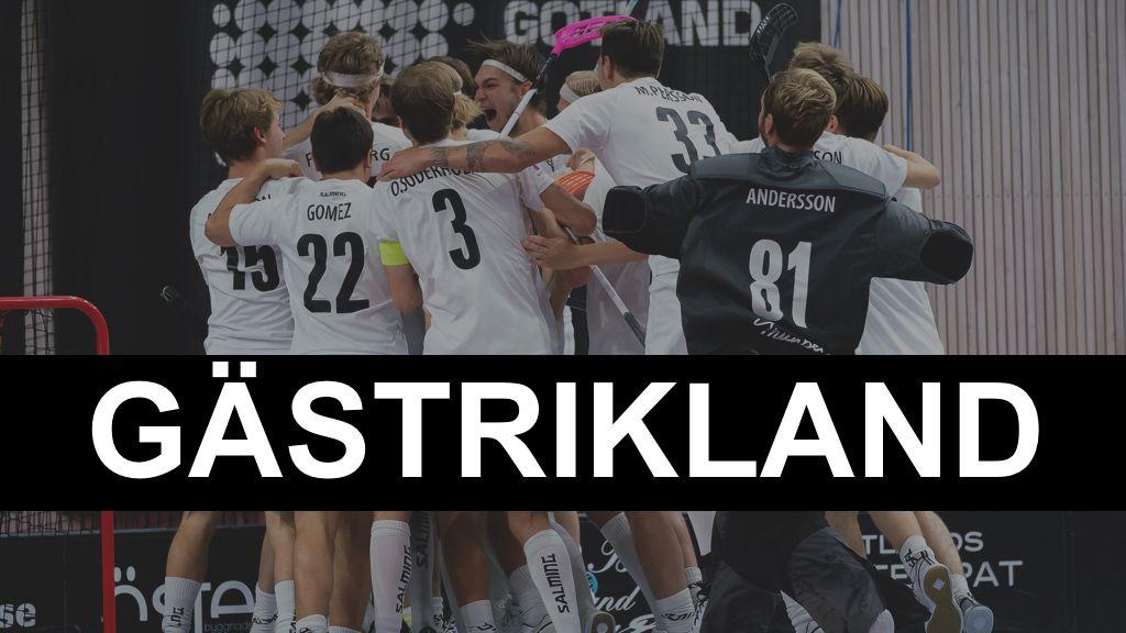 Gästrikland: 25 unga spelare som tippas slå igenom 2021/22
