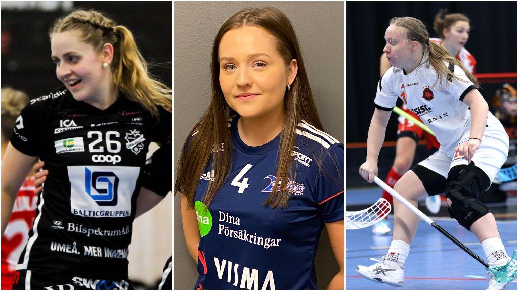 #ibsilly 2021: Allsvenskan Södra/Västra - 82 bekräftade värvningar