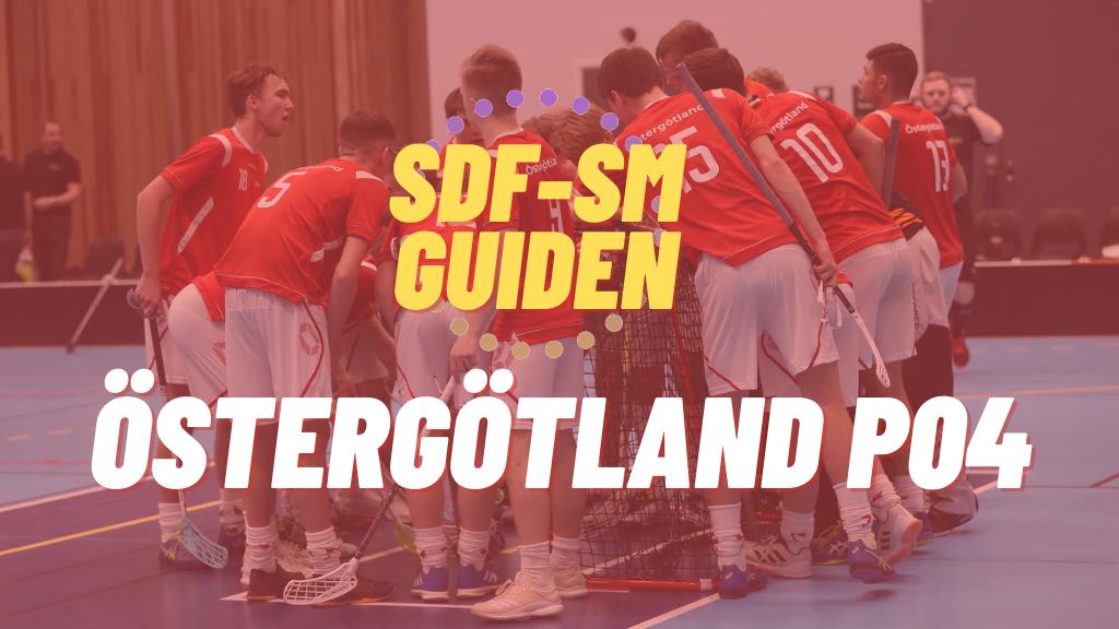 Östergötland P04: Så beskrivs alla spelare i distriktslaget